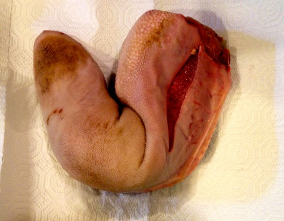 Grass fed organic beef tongue. Are you ready?
