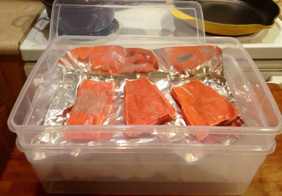 Wild caught sockeye salmon is unwrapped and placed in container.