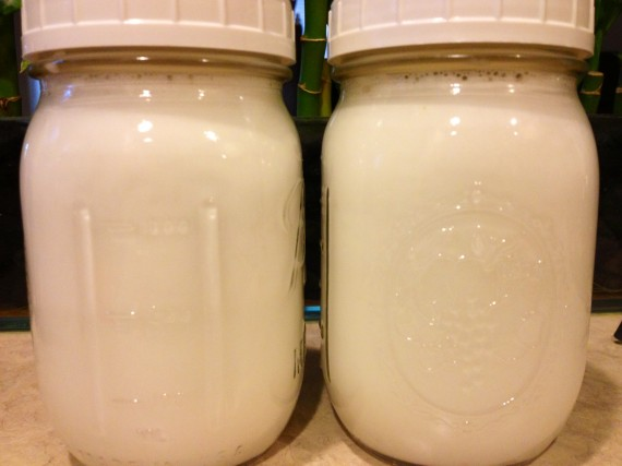 Homemade Vanilla Coconut Milk (Paleo. Vegan.)