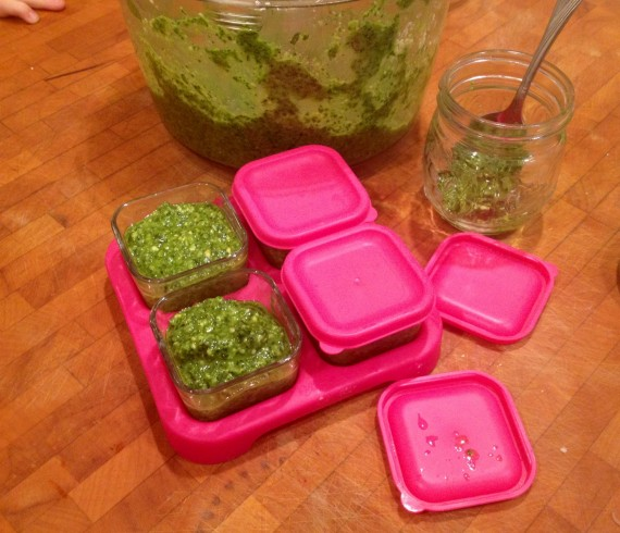 Pesto (#HerbalMedicine) going into little cups for freezing.