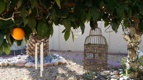Wind chimes and bird house on the orange tree. Totally cute.