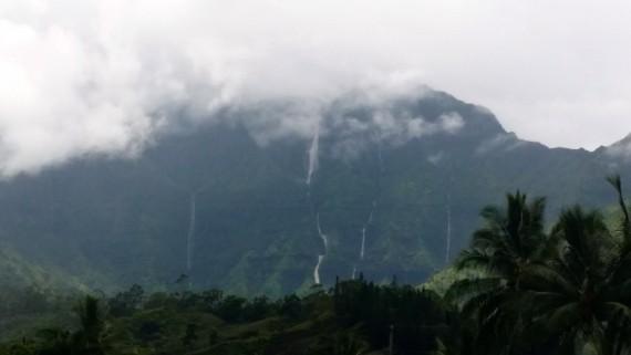 Verdant Kauai, Hawaii.
