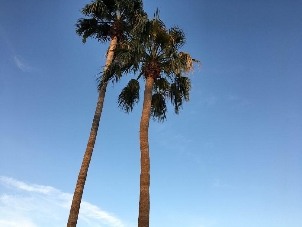 Blue Arizona Sky