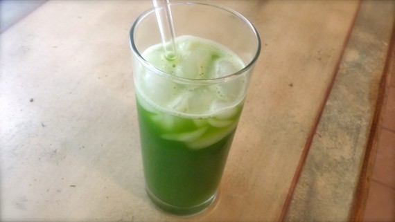 Protein Iced Matcha Green Tea