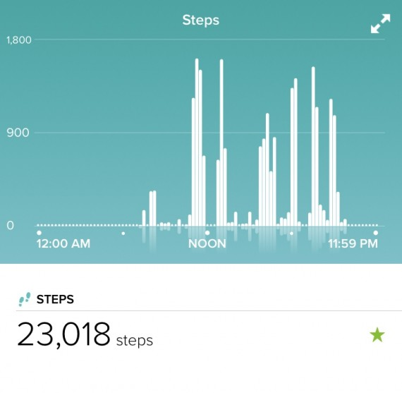 A great day of steps. It was almost 10 miles.