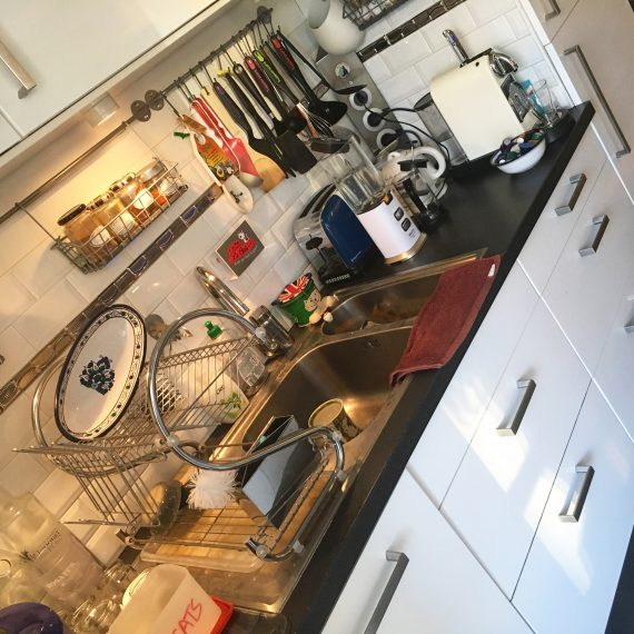 housesitting kitchen